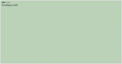 This Years Trending Paint Colours 2021 Dulux Eucalyptus Leaf Perth Premier Painting